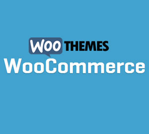 Product Spotlight: Ecommerce store design and setup-Woo Commerce